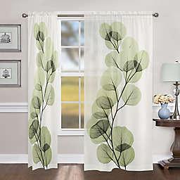 Laural Home Eucalyptus X-Ray Rod Pocket Sheer Window Curtain Panel (Single)