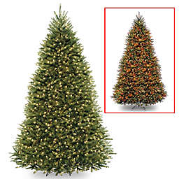 National Tree Company 10-Foot Pre-Lit LED Dunhill Fir Artificial Christmas Tree