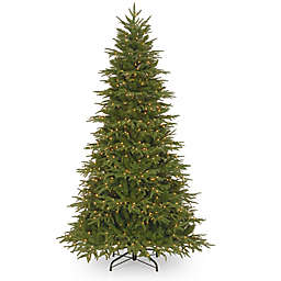 National Tree Company Pre-Lit Feel Real Northern Fraser Fir Artificial Christmas Tree
