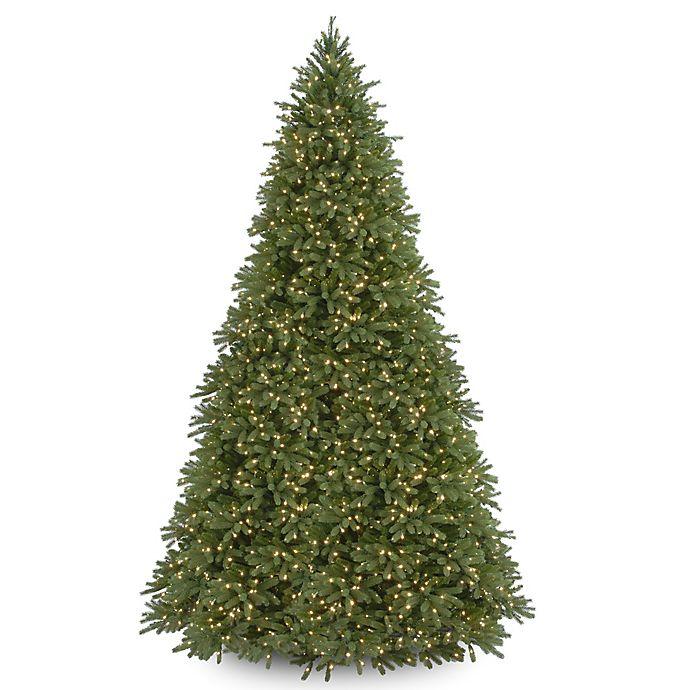 Fraser Fir Christmas Trees: National Tree Company Pre-Lit Jersey Fraser Fir Christmas