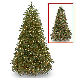 National Tree Company 9-Foot Pre-Lit Jersey Fraser Fir Christmas Tree with Dual Color® LED Lights