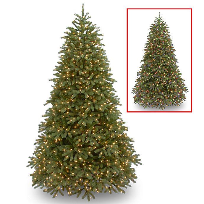 Fraser Fir Christmas Trees.National Tree Company Pre Lit Jersey Fraser Fir Christmas Tree With Dual Color Led Lights