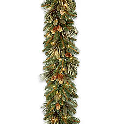 National Tree Company 9-Foot Pre-Lit LED Carolina Pine Garland