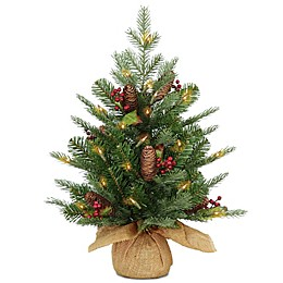 National Tree Company 2-Foot Pre-Lit LED Feel Real Nordic Spruce Artificial Christmas Tree