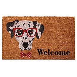 Home & More Mr. Belvodore 17-Inch x 29-Inch Multicolor Door Mat