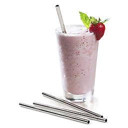 RSVP Endurance Stainless Steel Frozen Drink Straws (Set of 4)