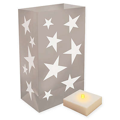 6-Piece Star LED Luminaria Kit with Timer in Silver