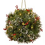 National Tree Company® 12-Inch Wintry Pine Kissing Ball