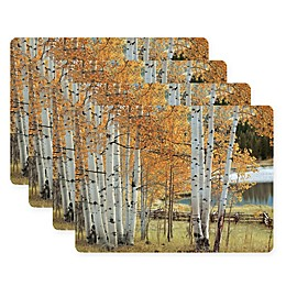 Pimpernel Birch Beauty Placemats (Set of 4)