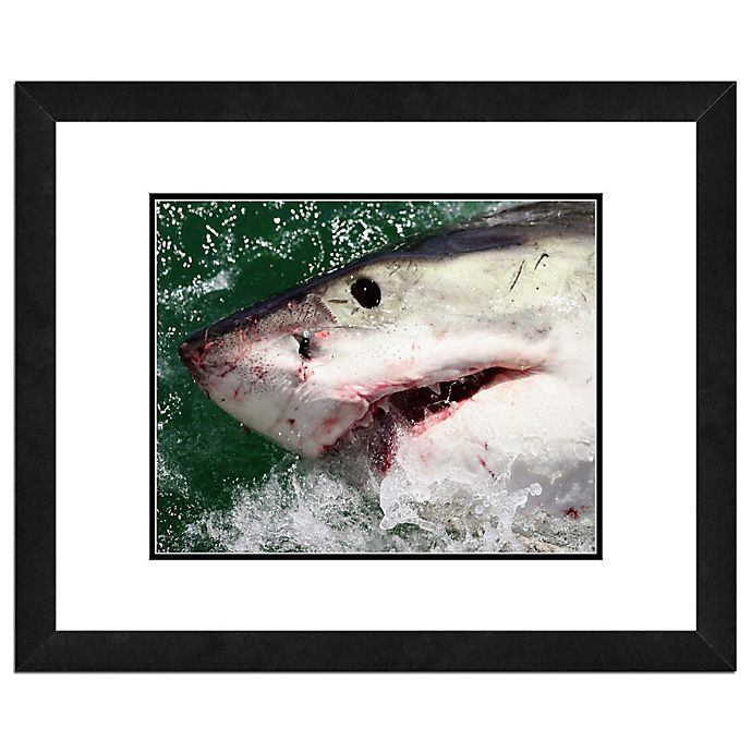 Alternate image 1 for Great White Shark 22-Inch x 26-Inch Framed Canvas Wall Art