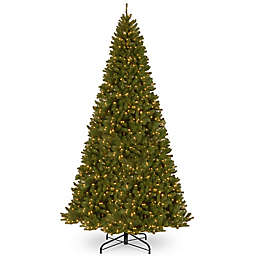 National Tree Company North Valley Spruce Pencil Slim Artificial Christmas Tree