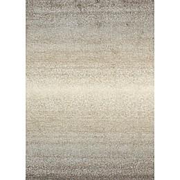 Ren-Wil Alberto Ombre Area Rug in Beige/Grey