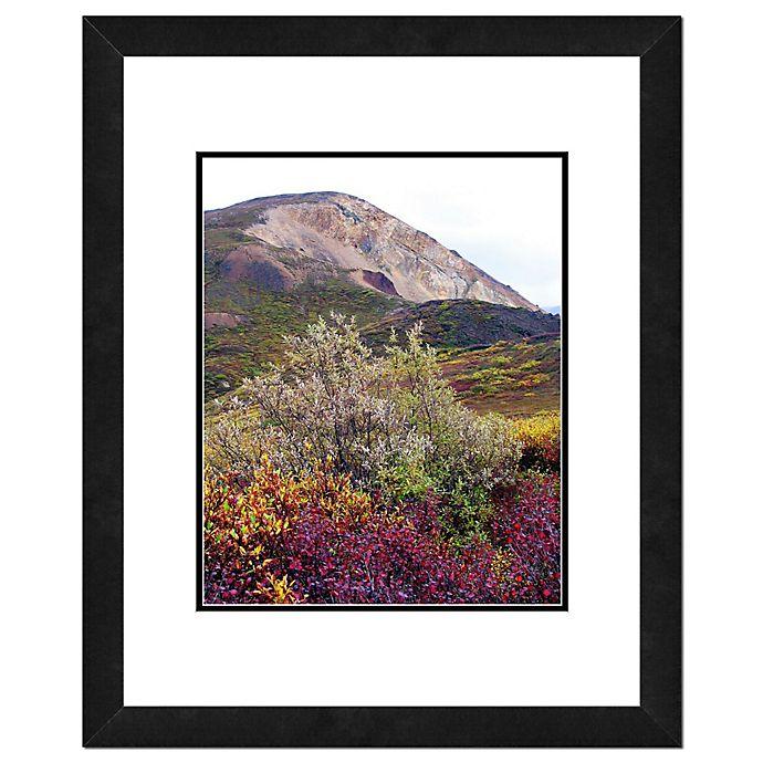 Alternate image 1 for Denali National Park 18-Inch x 22-Inch Framed Wall Art