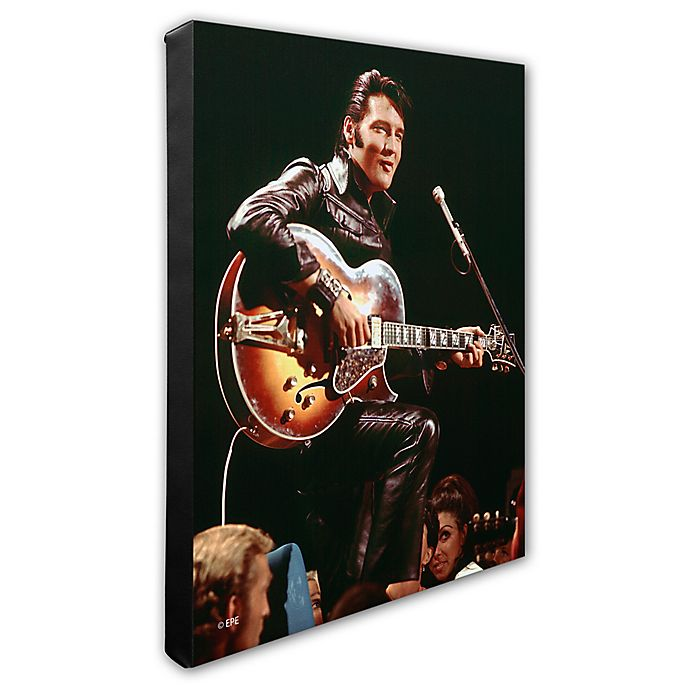 Alternate image 1 for Elvis Presley Photo Two 16-Inch x 20-Inch Canvas Wall Art