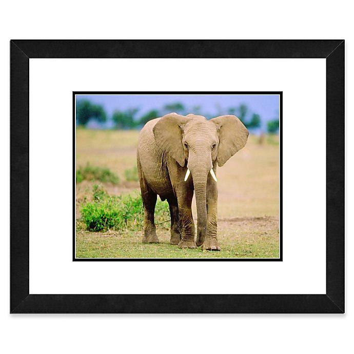 Alternate image 1 for Lone Elephant 22-Inch x 26-Inch Framed Wall Art