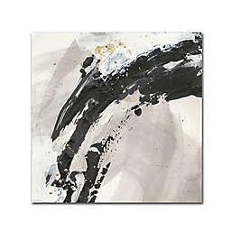 Trademark Fine Art Galaxy I 14-Inch Square Canvas Wall Art