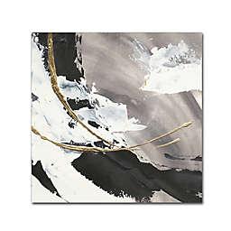 Trademark Fine Art Gilded Arcs I 24-Inch Square Canvas Wall Art