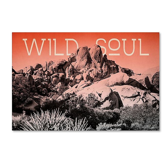 Alternate image 1 for Trademark Fine Art Elizabeth Urquhart Ombre Adventure II Wild Soul 12-Inch x 19-Inch Canvas Wall Art