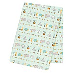 Trend Lab® Southwest Adventure Flannel Swaddle Blanket