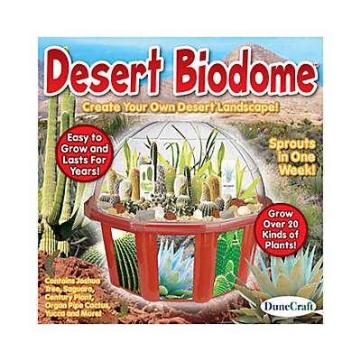 DuneCraft Desert Biodome Terrarium