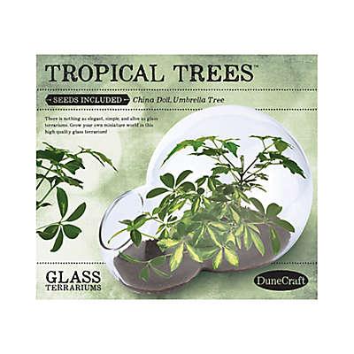 DuneCraft  Tropical Trees Double Bubble Glass Terrarium