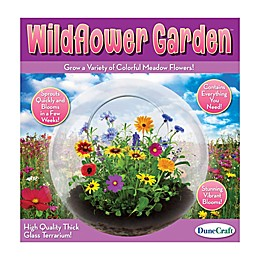 DuneCraft  Wildflower Garden Glass Terrarium
