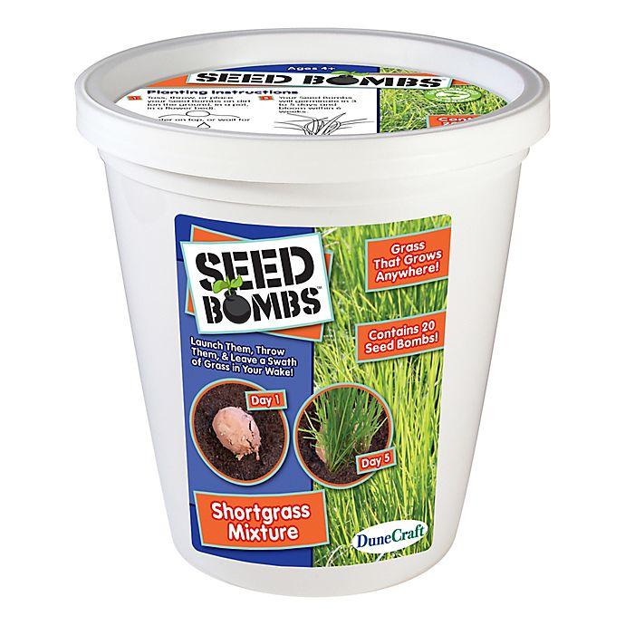 Alternate image 1 for DuneCraft Short Grass Mixture Seed Bomb Bucket