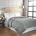 Beautyrest® Giverny Full/Queen Blanket in Grey