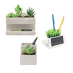 Kikkerland® Desk Organizer with Faux Plants Collection