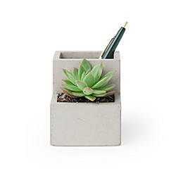 Kikkerland® Small Desk Organizer Pen Holder and Faux Planter in Concrete
