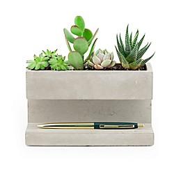 Kikkerland® Large Desk Organizer Pen Holder in Concrete