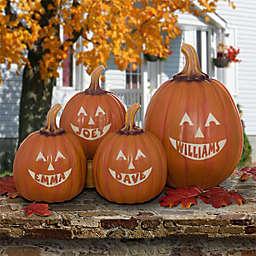Jack O'Lantern Pumpkin Collection