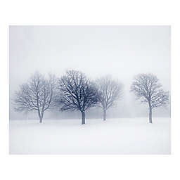 Winter Trees 9-Foot 10-Inch x 8-Foot 1-Inch Wall Mural