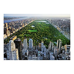 Ideal Decor Central Park Wall Mural in Green
