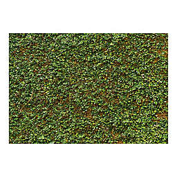 Ideal Decor Ivy Wall Mural in Green