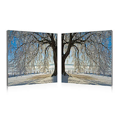 Elementem Photography 2-Panel Winter Tree 20-Inch x 60-Inch Photographic Canvas Wall Art