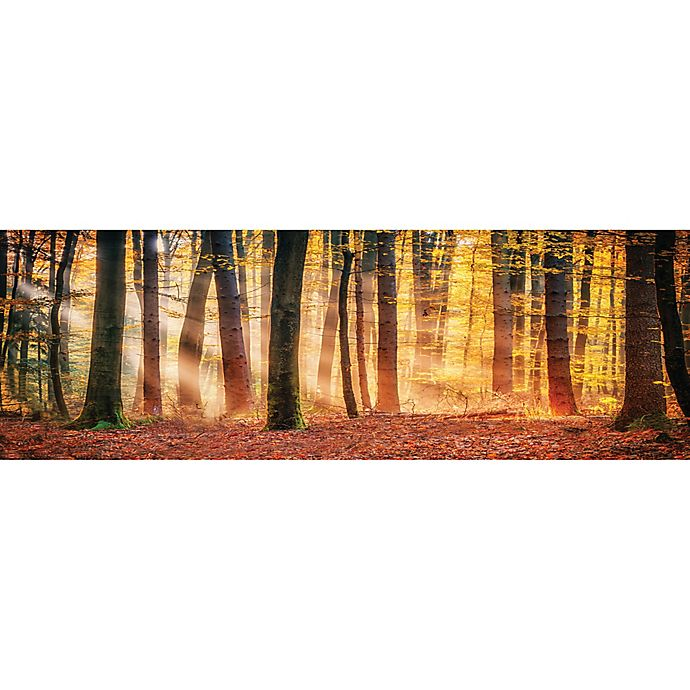 elementem photography 3 panel autumn trees sunset 20 inch x 60 inch canvas wall art bed bath. Black Bedroom Furniture Sets. Home Design Ideas