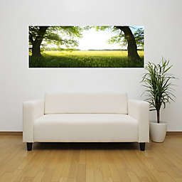 Elementem Photography In-Between the Trees 20-Inch x 60-Inch Canvas Wall Art