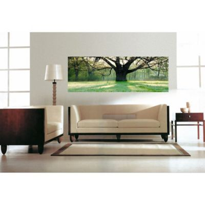elementem photography oak tree 20 inch x 60 inch canvas wall art bed bath beyond. Black Bedroom Furniture Sets. Home Design Ideas
