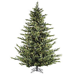 Fraser Hill Farm 9-Foot Foxtail Pine Artificial Christmas Tree with Clear LED Lights