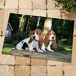 Picture It! 18-Inch x 27-Inch Photo Door Mat