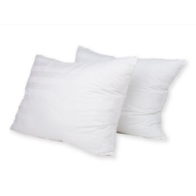 Ez Dreams Natural Latex Plus Pillow Set Of 2 Bed Bath