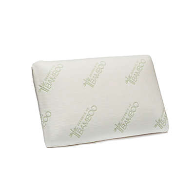 Essence of Bamboo Rayon Made from  Bamboo Classic Memory Foam Pillow