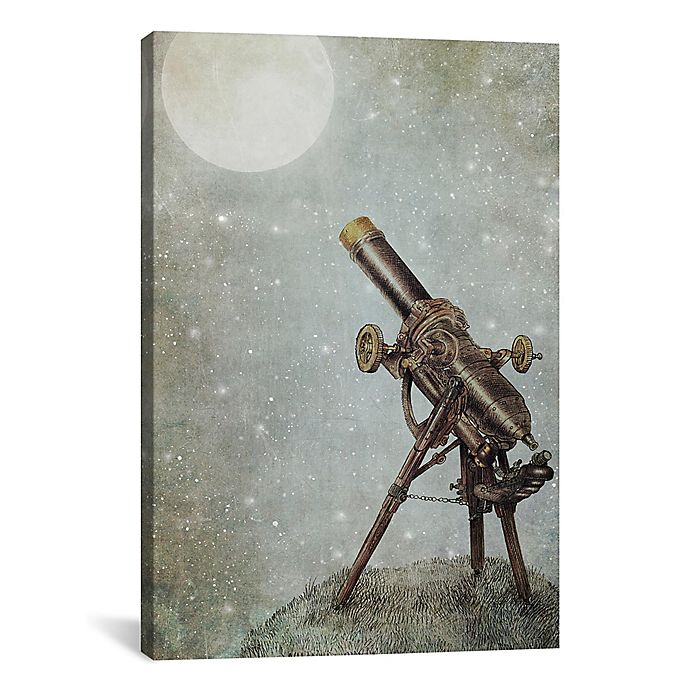 Alternate image 1 for iCanvas Moonrise 12-Inch x 18-Inch Canvas Wall Art