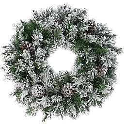 Northlight 24-Inch Flocked Pine Wreath