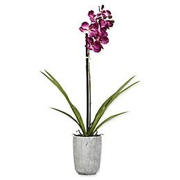 D&W Silks Purple Vanda Orchid in Grey Concrete Planter