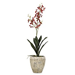 D&W Silks Red Baby Dendrobium Orchid in Aged Cement Planter