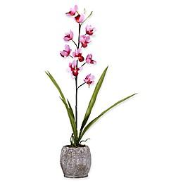 D&W Silks Pink Cymbidium Orchids in Grey Ceramic Planter