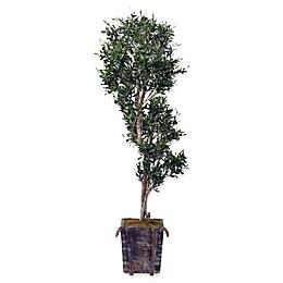 D&W Silks Sculptured Olive Tree in Rustic Wooden Planter