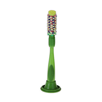 Scrub Daisy® 3-Piece Dish Wand Set with Hyacinth Head